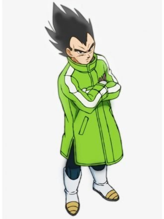 Broly Vegeta & Goku SAB Leather Green Coat